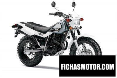Ficha técnica Yamaha tw200 2015