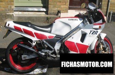 Ficha técnica Yamaha tzr 250 1988