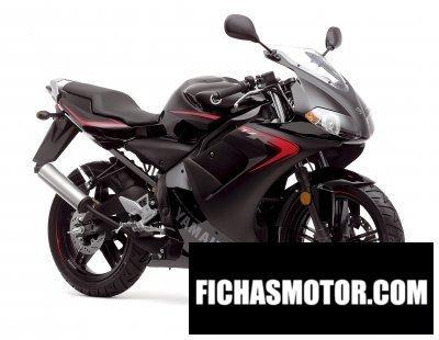Ficha técnica Yamaha tzr 50 2007
