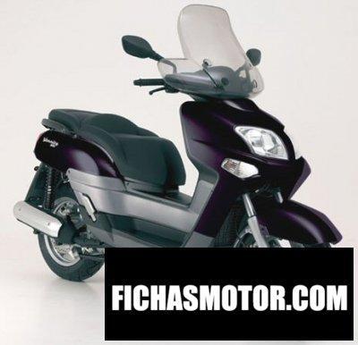 Ficha técnica Yamaha versity 300 2004