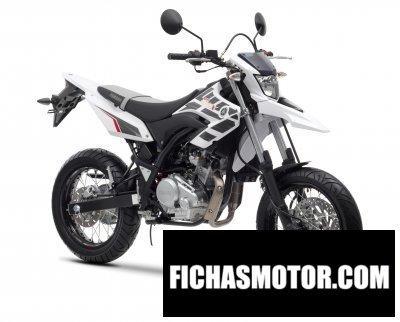 Ficha técnica Yamaha wr125 x 2013