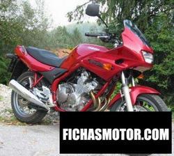 Imagen moto Yamaha xj 600 s diversion 2001