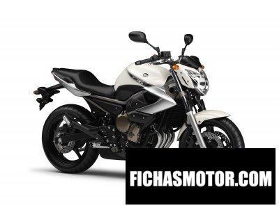 Imagen moto Yamaha xj6 año 2009