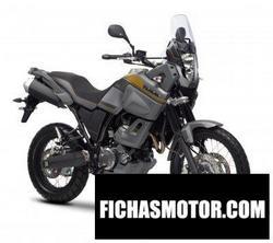 Imagen moto Yamaha xt660z tenere abs 2015