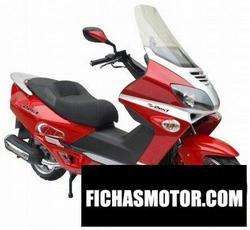 Imagen moto Zest z300t-1 2011